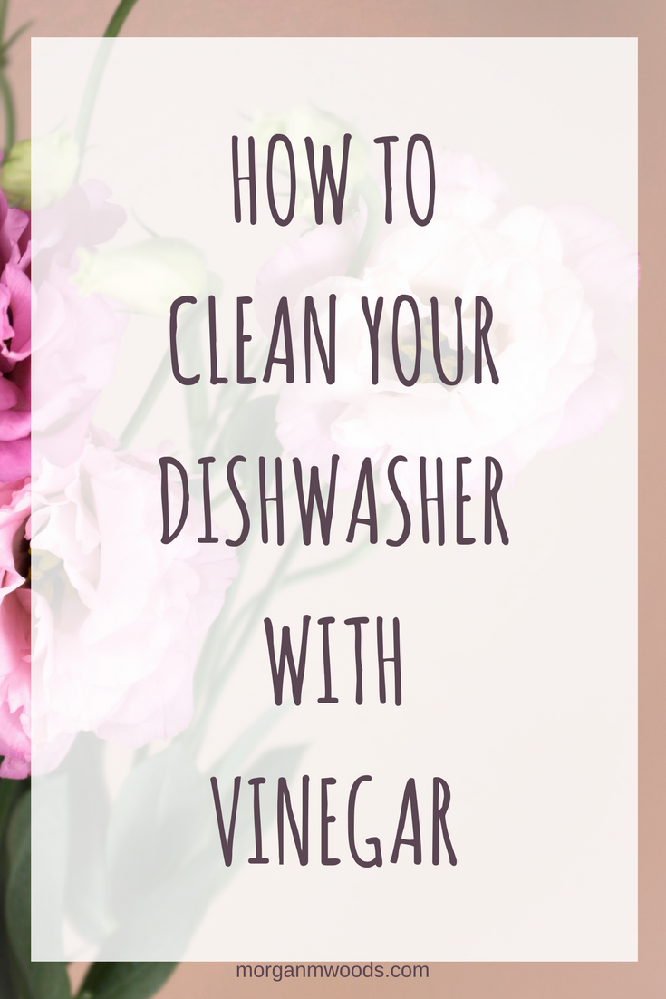 how to clean your dishwasher with vinegar morgan m woods. Black Bedroom Furniture Sets. Home Design Ideas