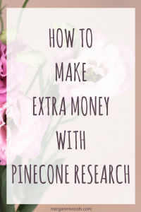 How to make extra money with Pinecone Research
